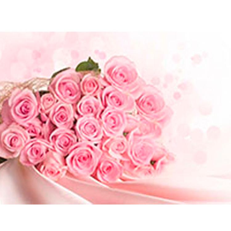 易胜博客户端易胜博注册_易胜博客户端花卉系列